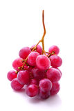 Bunch of red grapes isolated on white Stock Image