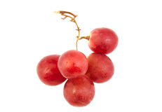 Bunch of red grapes isolated on white. Royalty Free Stock Photography
