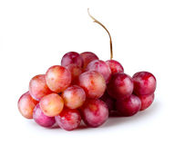 Bunch of red grapes Royalty Free Stock Photography