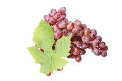 Bunch of red grapes with leaf Stock Image