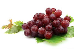 Bunch of red grapes and some leaves Stock Photo