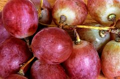 Bunch of red grapes. Royalty Free Stock Photos