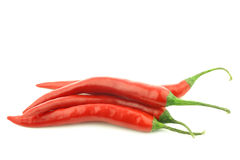 Bunch of red hot chili peppers Royalty Free Stock Image