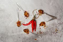 Bunch of red hot chilli peppers and flakes in spoons on grey stone kitchen table Stock Image