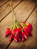 Bunch of red hot pepper. Bunch of fresh small red hot pepper  on wooden table Stock Photography