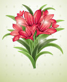 Bunch of red lilies Royalty Free Stock Photos