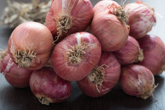 Bunch of red onions. Royalty Free Stock Photos