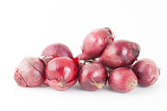 Bunch of red onions Royalty Free Stock Photos