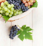 Bunch of red, purple and white grapes Stock Photo