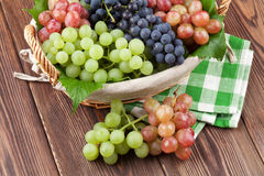 Bunch of red, purple and white grapes in basket Royalty Free Stock Photos