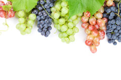 Bunch of red, purple and white grapes Royalty Free Stock Photography