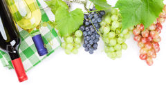 Bunch of red, purple and white grapes and wine Stock Images