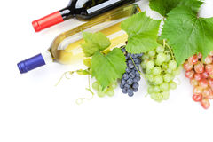Bunch of red, purple and white grapes and wine Royalty Free Stock Images