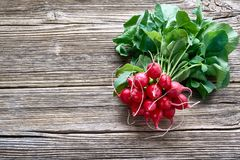 Bunch of red radish on rustic wooden background. Top view, copy. Space. Healthy food, organic food Royalty Free Stock Photo