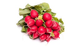 Bunch of red radishes Royalty Free Stock Photography
