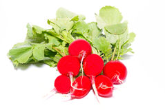 Bunch of red radishes. Isolated on white Stock Photo