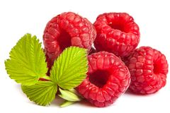 Bunch of a red raspberry on a white background. Close up macro s Stock Images