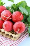 Bunch of red ripe radish Stock Photo