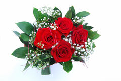 Bunch red roses stock images