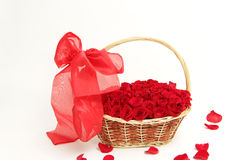 Bunch of  red roses in the basket Stock Photography