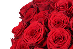 Bunch of red roses on birthday, Valentine's or mother's day Royalty Free Stock Photo