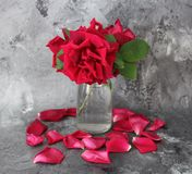 A bunch of red roses Stock Photo