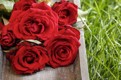 Bunch of red roses on wooden tray Royalty Free Stock Photography
