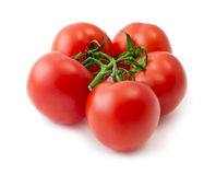 Bunch of red tomato over white background. Bunch of five red tomato isolated over white background Royalty Free Stock Photos