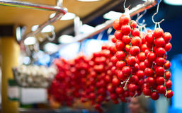 A bunch of red tomatoes with blurred background Stock Images