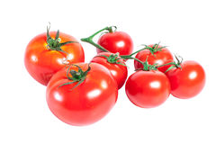 Bunch of red tomatoes Stock Photos