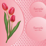 Bunch of red tulips. Vector Royalty Free Stock Photos