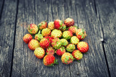 Bunch of red wild strawberry Royalty Free Stock Photos