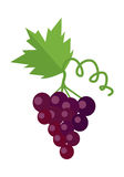 Bunch of Red Wine Grape. With green leaves. Fresh fruit. Vineyard grape icon. Red grape icon. Wine grape icon. Isolated object in flat design on white Royalty Free Stock Photo