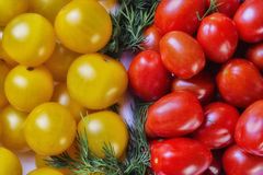 Bunch of red and yellow cherry tomatoes with dill in a bowl. Top view Royalty Free Stock Images