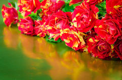 Bunch of red and yellow roses Royalty Free Stock Images