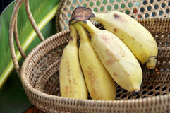 Bunch of ripe banana in basket Royalty Free Stock Photo