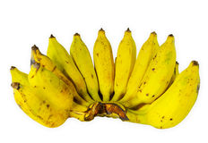 Bunch of ripe banana. Isolate on white background Royalty Free Stock Images