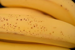 Bunch of Ripe Bananas. Bunch of ripe bananas isolated on a black background Stock Images