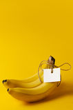 Bunch of ripe bananas with label on yellow Stock Images