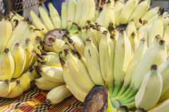 Bunch of ripe bananas. At market in countryside Royalty Free Stock Photography