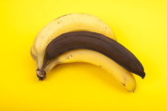 Bunch of ripe bananas on yellow background Stock Image