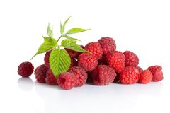 Bunch of ripe berries Stock Photography
