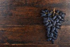 Bunch of ripe blue grapes stock image