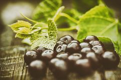 A pile of ripe cherries on a wooden surface royalty free stock photo