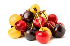 A bunch of ripe colored cherries on a white background, close-up. royalty free stock image