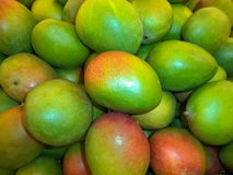 A bunch of ripe exotic mango fruits. A bunch of fresh ripe exotic mango fruits stock image