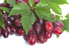 Bunch ripe, fresh red grapes with leaves. Bunch ripe, fresh red grapes with leaves on a white background Stock Images