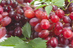 Bunch ripe, fresh red grapes with leaves. Bunch ripe, fresh red grapes with leaves on a white background Stock Photos