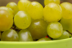 Bunch of ripe grapes. In a basin stock photos