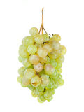 Bunch of ripe grapes Royalty Free Stock Photo